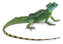 GSD Week 3: The Strategic Agent Kills the Lizard